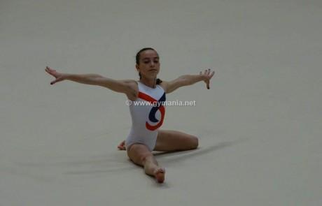 אליפות ישראל 2015 לדרגות ג׳-ד׳